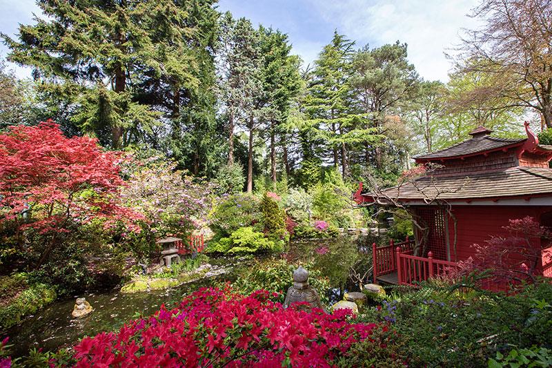 compton-acres-poole-dorset-japanese-week-2017