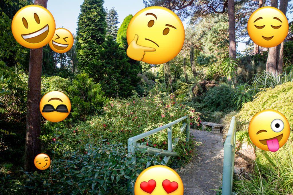 compton-acres-poole-dorset-cafe-tearooms-childrens-half-term-emoji-challenge